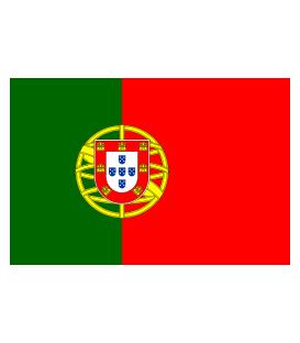 Portuguese Karaoke