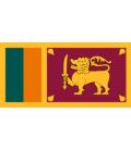 Sri Lankan Sinhala Karaoke